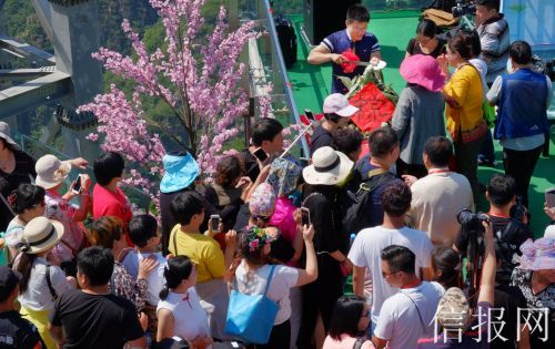 游客免费品尝大粽子