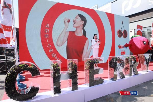广州江秾汇批发市场庆祝中国智利车厘子季