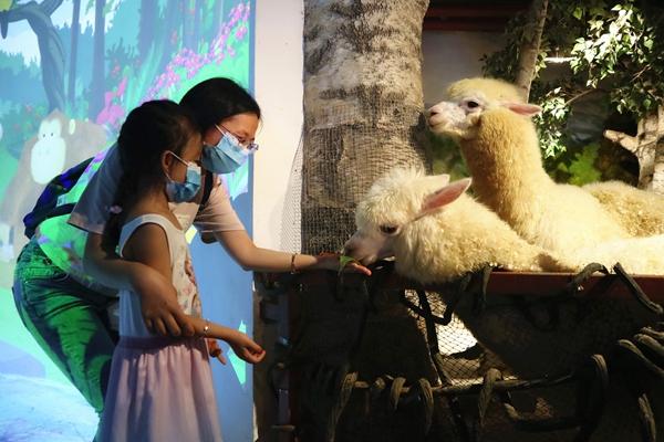 广州正佳极地海洋世界上演海底大戏《龙王传奇》